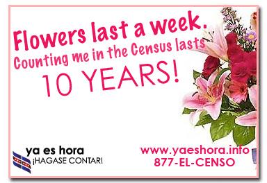 Flowers last a week... Census Postcard